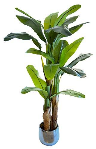 Bananera Artificial,...
