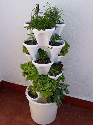 Ecogarden Irisana...