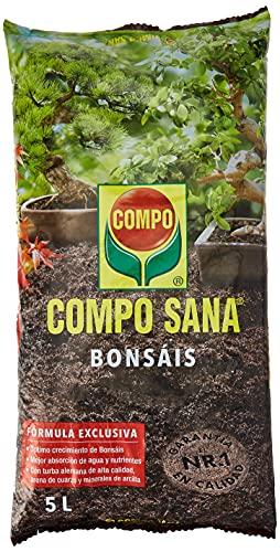 Compo Sana Bonsáis con 8...