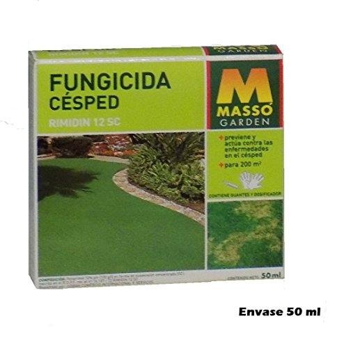 MASSO 234283 - fungicida...