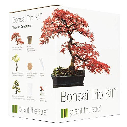 Plant Theatre - Kit de...