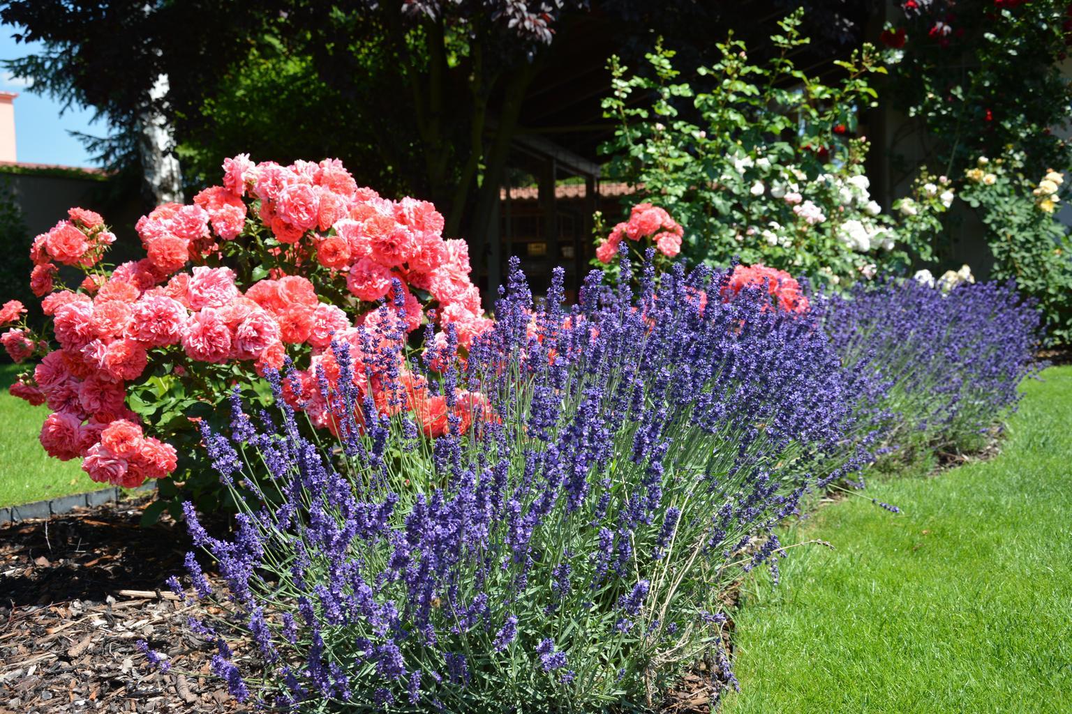 Hay muchos estilos de jardines