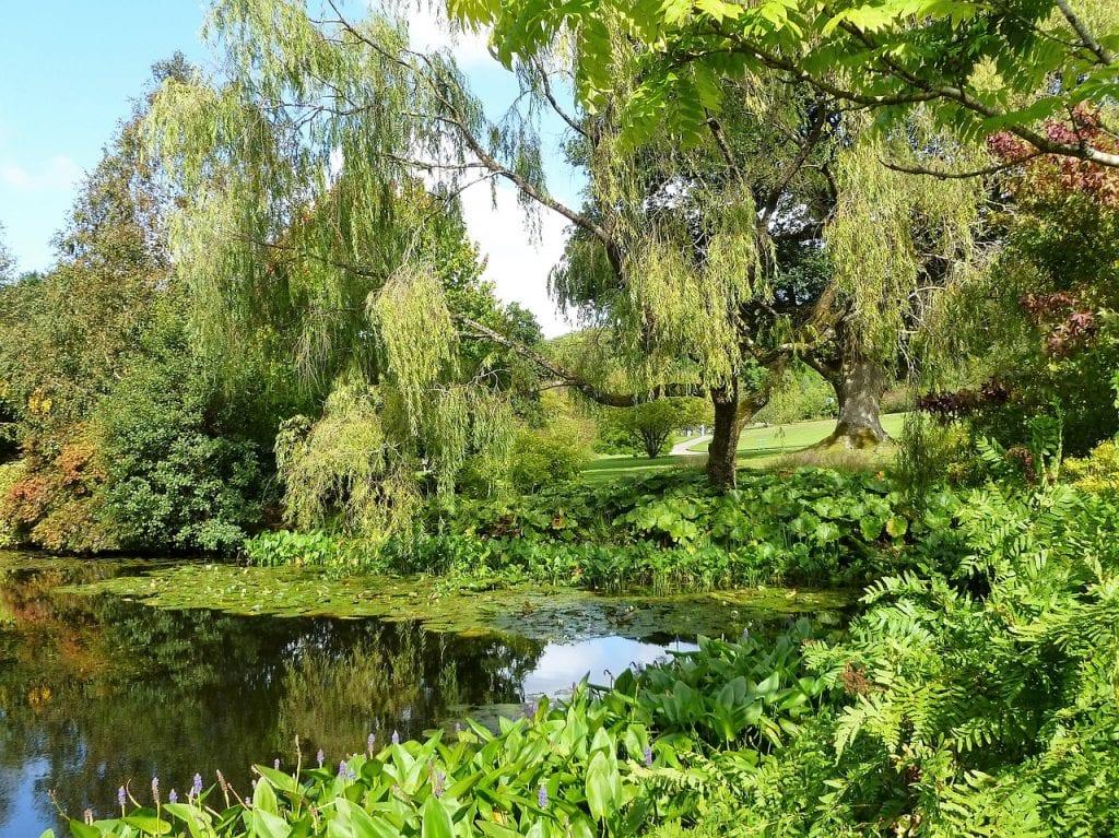 El jardín inglés es una imitación de la naturaleza