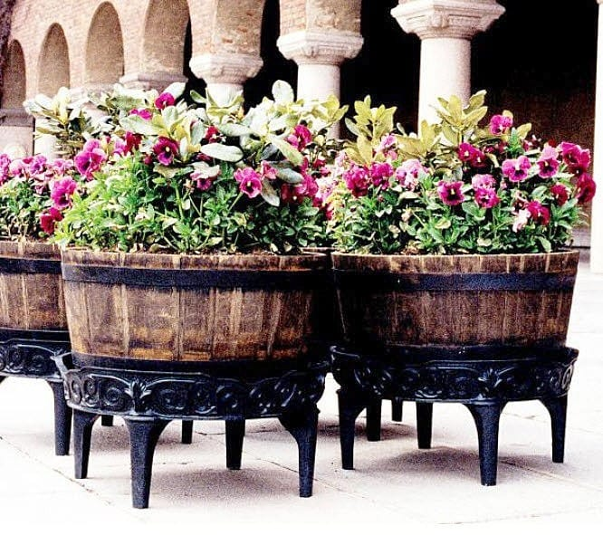 Combinar Plantas en Jardineras