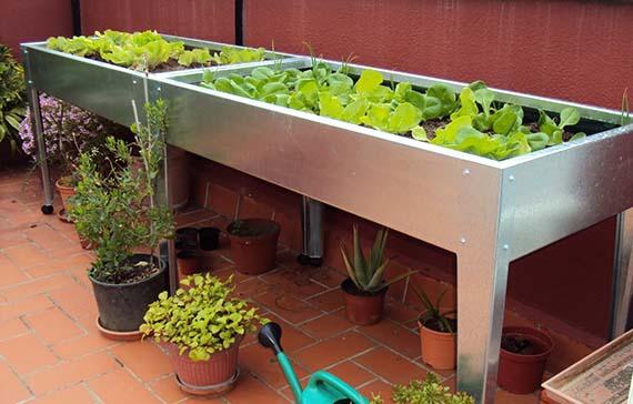 mesas de cultivo para el huerto urbano