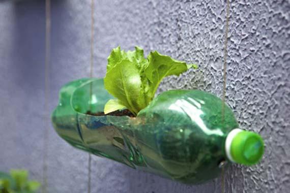 maceta en botella de plastico