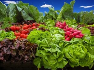 Las hortalizas son plantas comestibles