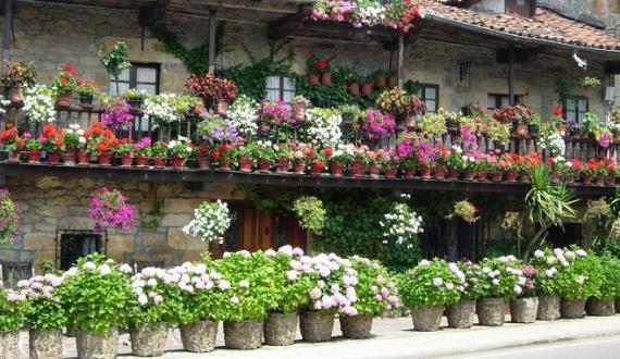 macetas para tu jardín