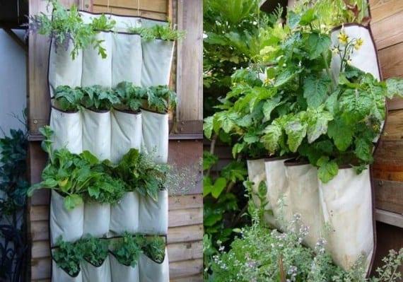 Jardín vertical con organizador