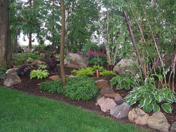 Informaci n sobre plantas para poner bajo los rboles for Jardines con arboles y arbustos