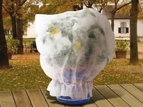 Proteger con manta térmica