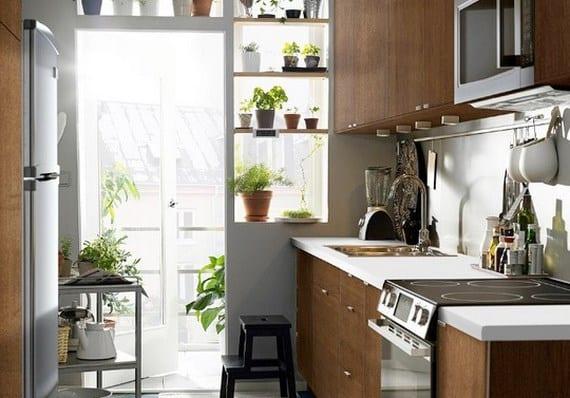 Plantas y hierbas ideales para la cocina - Plantas en la cocina ...