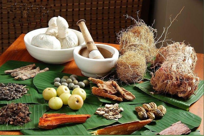 Remedios caseros para plantas