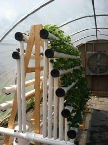 Hidroponía en vertical