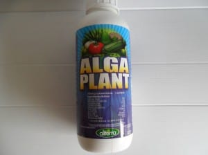 Fertilizante de algas