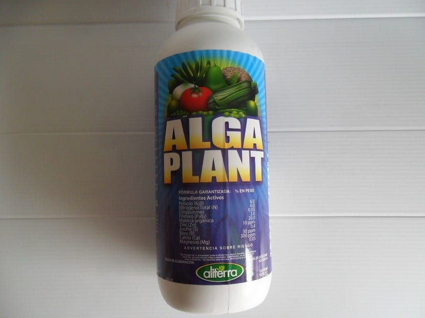 Fertilizante de algas