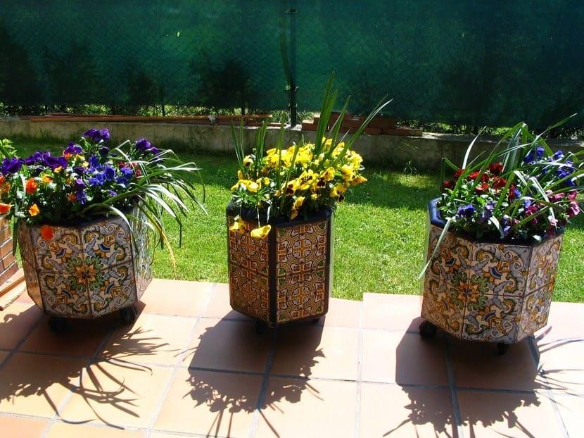 Consejos sobre macetas tierra sana y nutrida for Estudiar jardineria