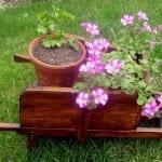 Madera de pino para el jardín