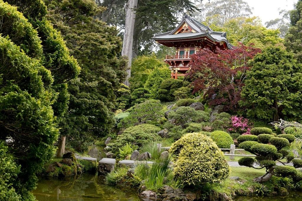 El jardín japonés tiene plantas de todo tipo