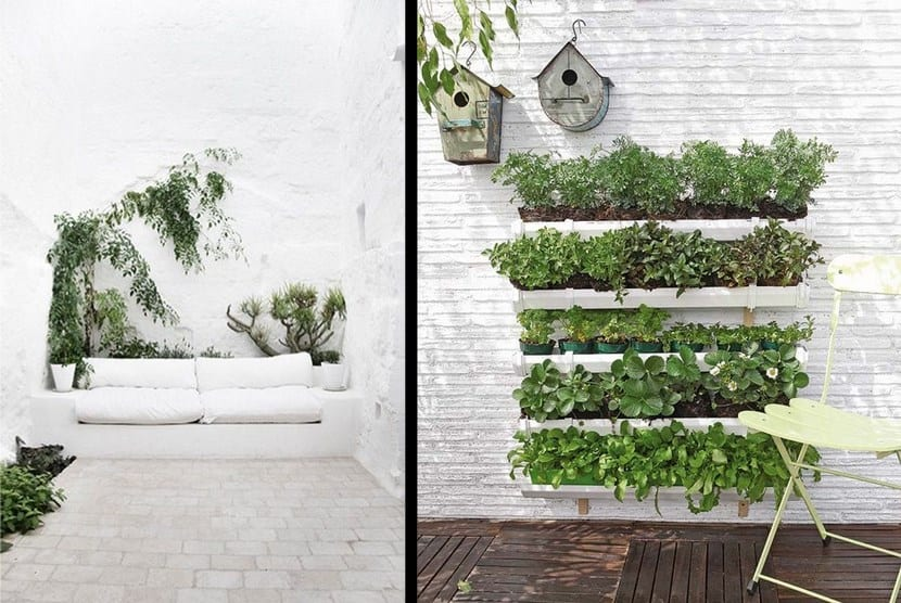 Buenas ideas para decorar con plantas for Decoracion con plantas sinteticas