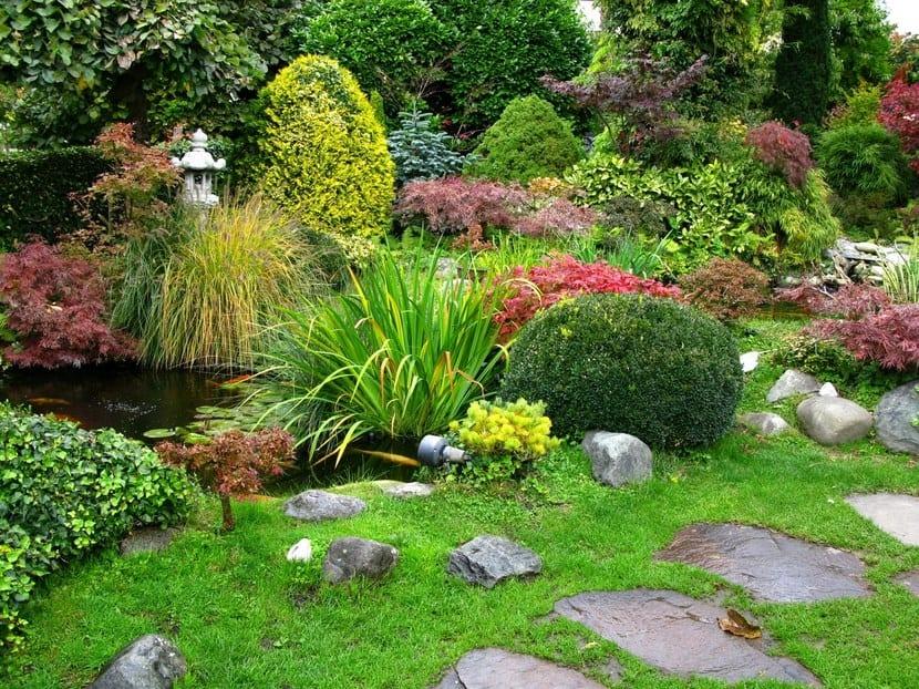 Seleccionar las plantas del jard n for Arbustos con flores para jardin