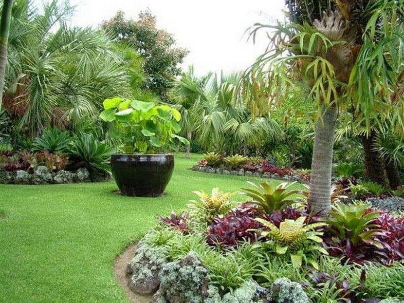 Dise os jardines con frutales casa dise o for Disenar jardines online gratis