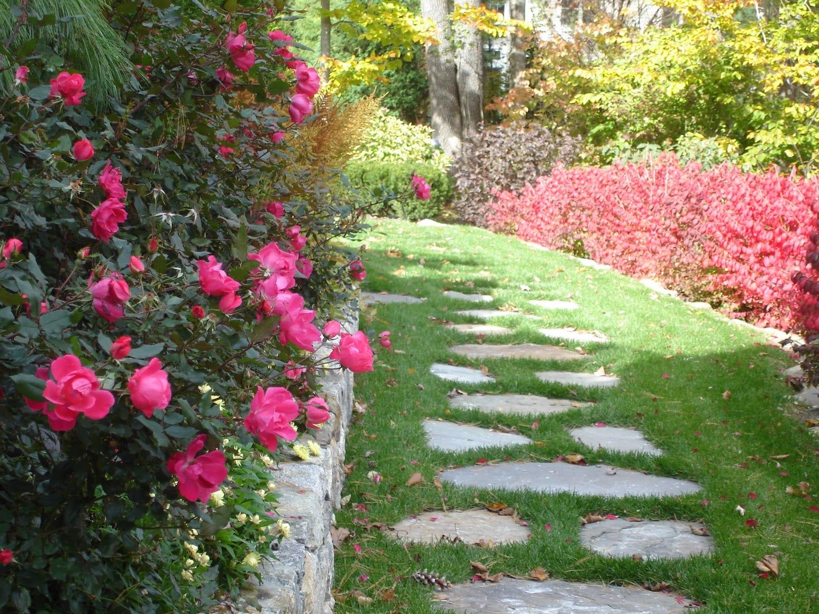 Senderos jardín
