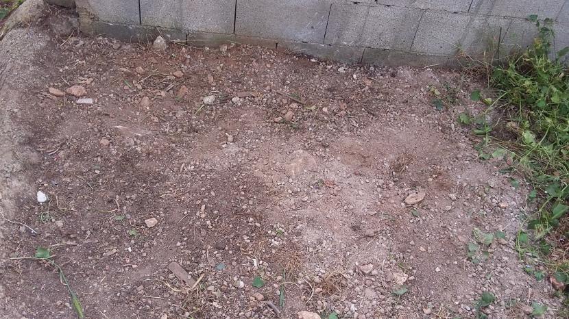 Terreno sin hierbas