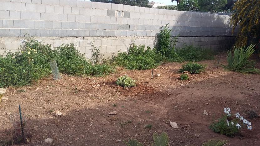 Zona de jardín