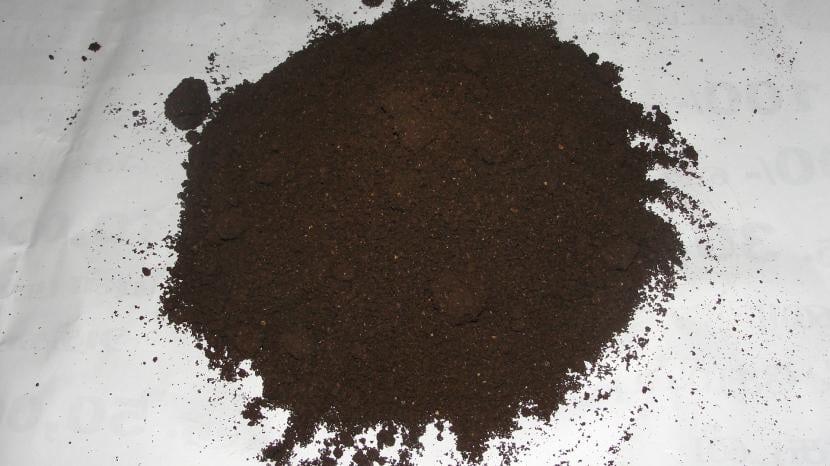 Compost para plantas