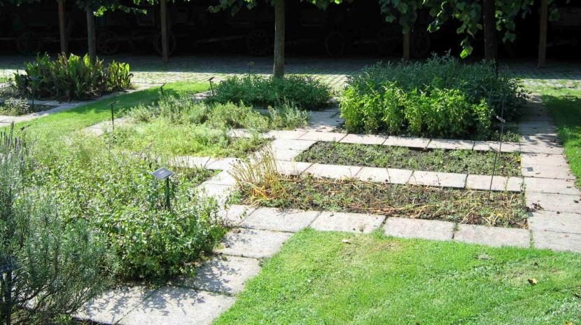 Jardín herbal