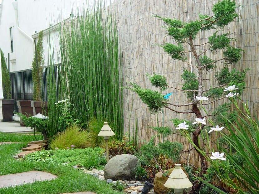 Resultado de imagen de jardín zen