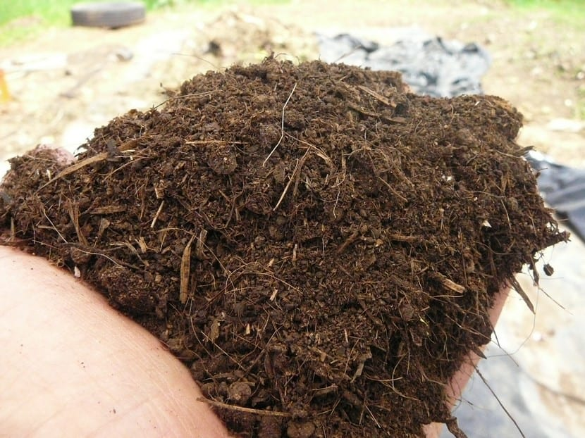 Abono orgánico para plantas