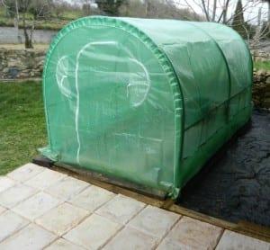 Invernadero para huerto