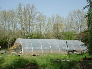 Invernadero casero para huerto