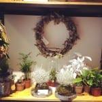 Decoración navideña con plantas