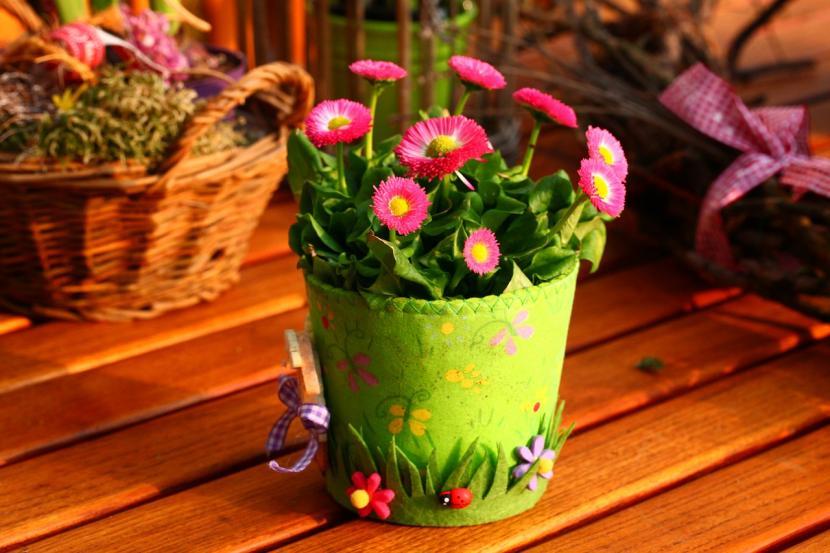 Flores en maceta