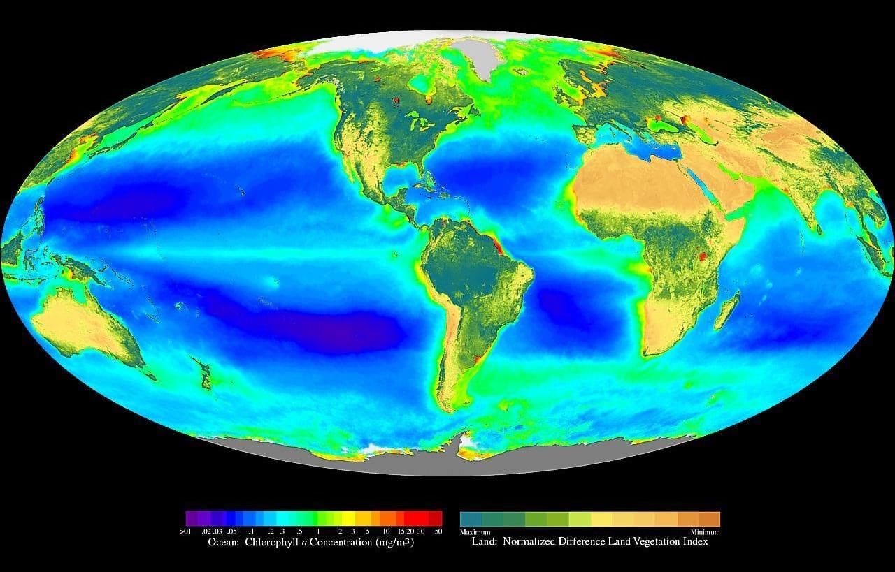 Mapa mundial de la fotosíntesis