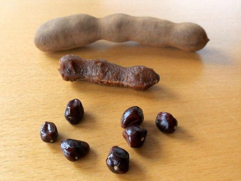 Semillas de Tamarindo