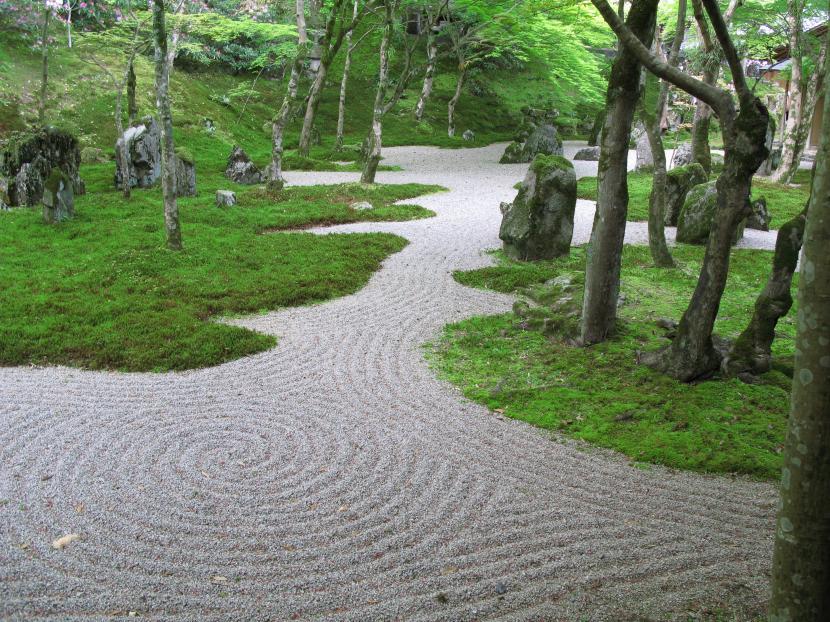 Camino en jardín