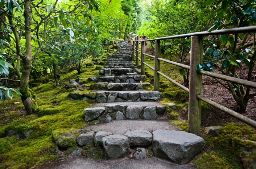Escalera de jardín