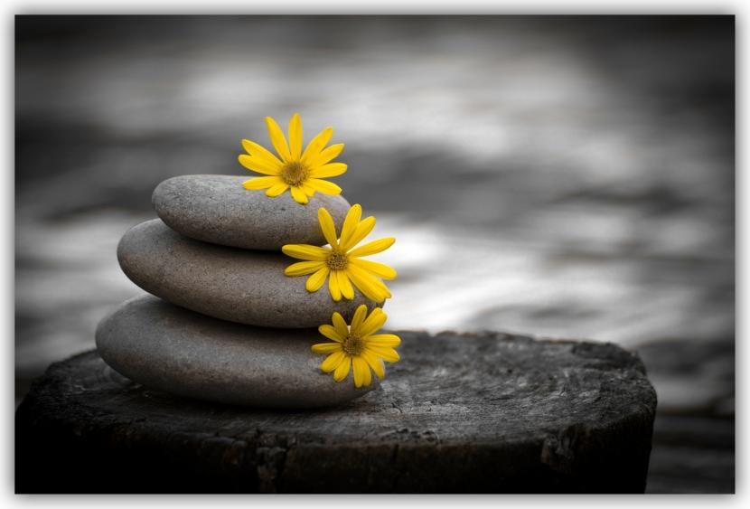 Piedras primaverales