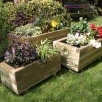 Jardineras con flores