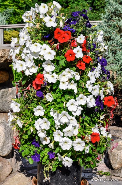 Torre de flores terminada