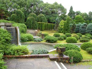 Vista de un jardín con poco mantenimiento