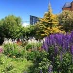 Jardín primaveral