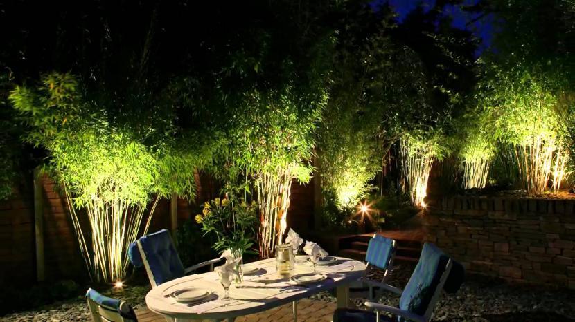 Luz en el jardín