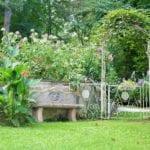 Plantas en jardín