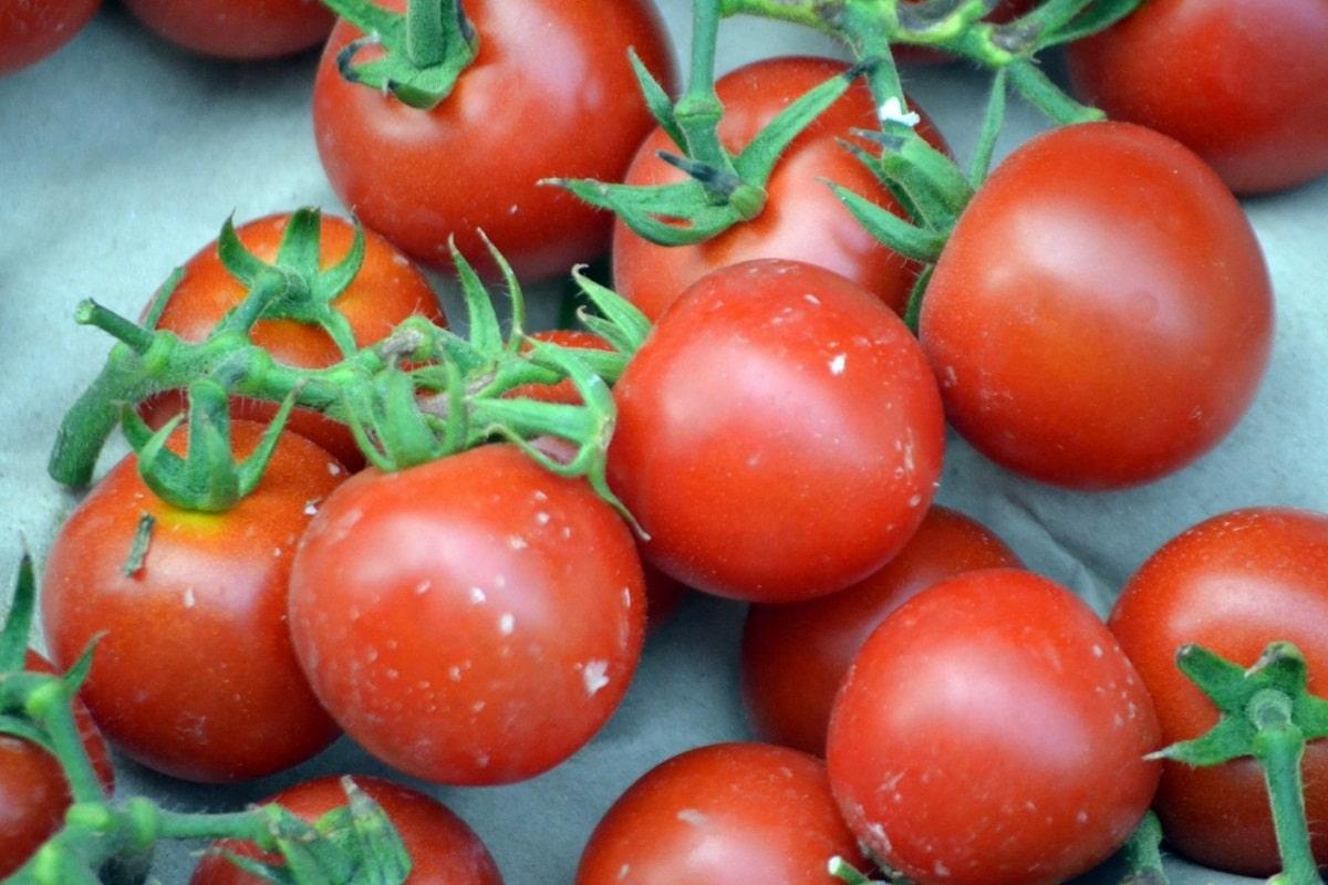 El tomate Cherry es pequeño
