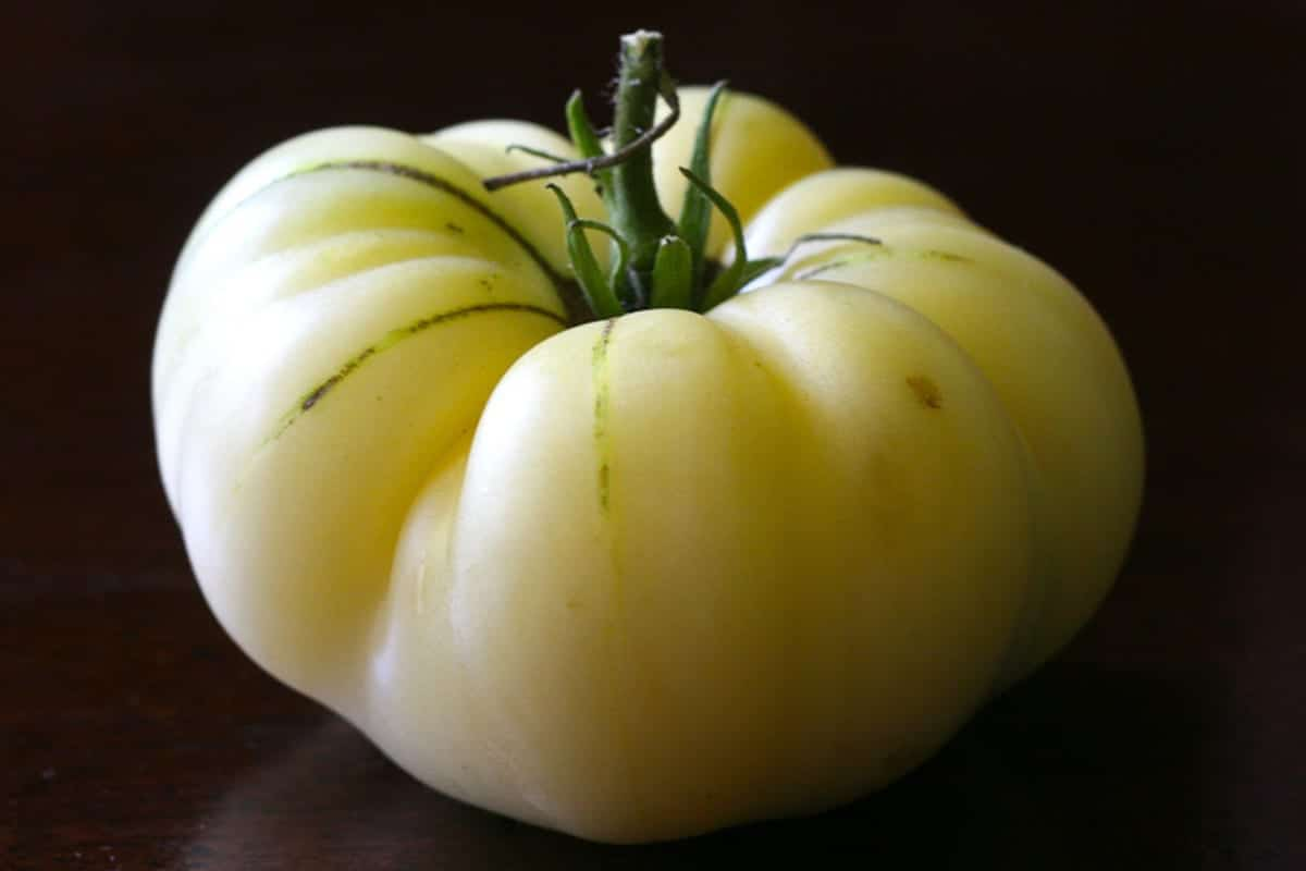 Tomate 'White Beauty', una variedad de tomates de color claro